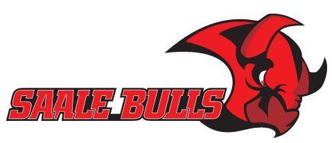 Saale Bulls